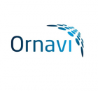 Ornavi Logo Medium Sized